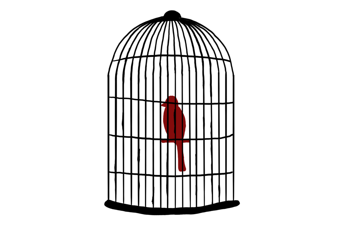 """The Caged Bird"""